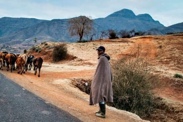 Lesotho Mo...